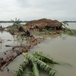 Bangladesh: Restoring livelihoods in the aftermath of Cyclone Mahasen / WFP Photo