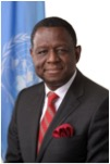 Executive Director of UNFPA Dr. Babatunde Osotimehin